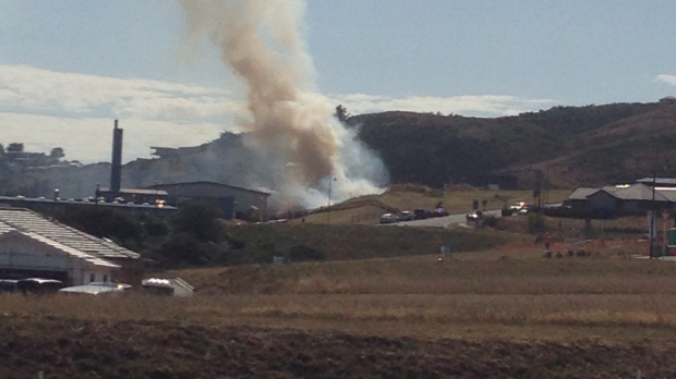 A fire has burned a half-acre of scrub beside Aotea College in Porirua. Photo - Anita Lancaster